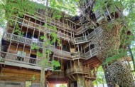The Largest Treehouse In the World Is In Tennessee