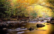 When Was Your Last Visit to the Smokies?