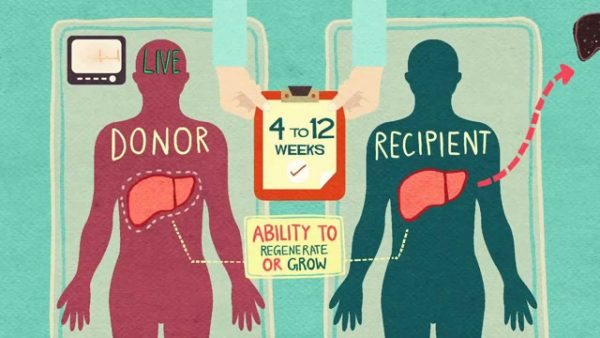 Proposed Changes Could Aid Local Organ List Wait Times