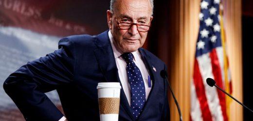 Schumer says infrastructure bills edge U.S. close to Biden climate goals